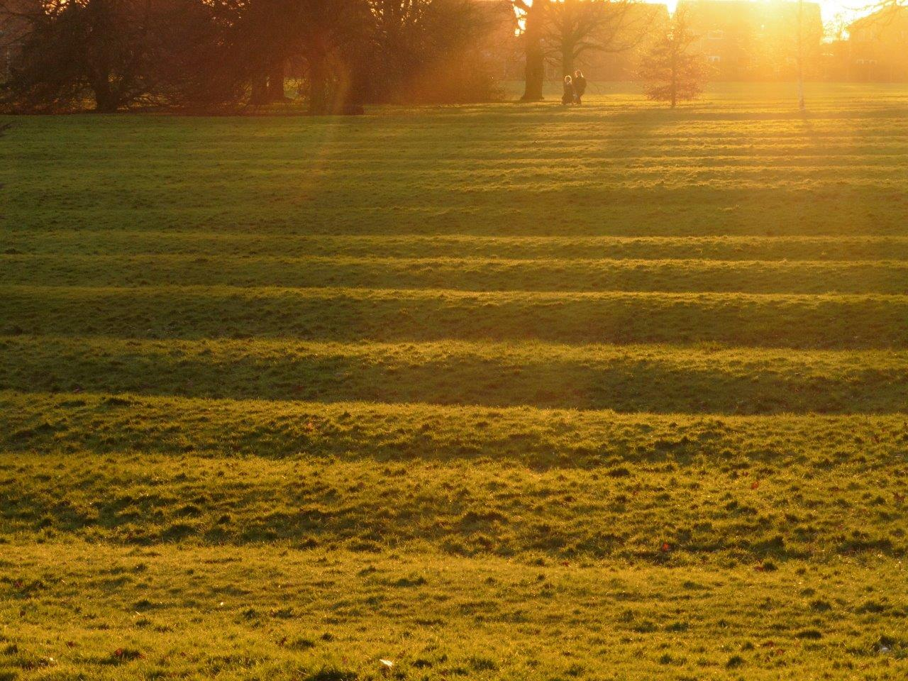Clemsons Park - view over ridge and furrow to setting sun