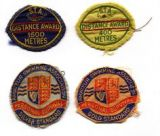 Swim Badges  Did you use to sew them onto your swim costumes?