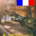 Walk in French with a Christmas Theme