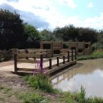 Millennium Wood Pond Improvements