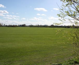 Image for link to Racecourse Playing Fields