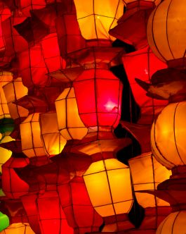 Luminate Lantern & Light Festival