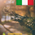 Walk in Italian with a Christmas Theme